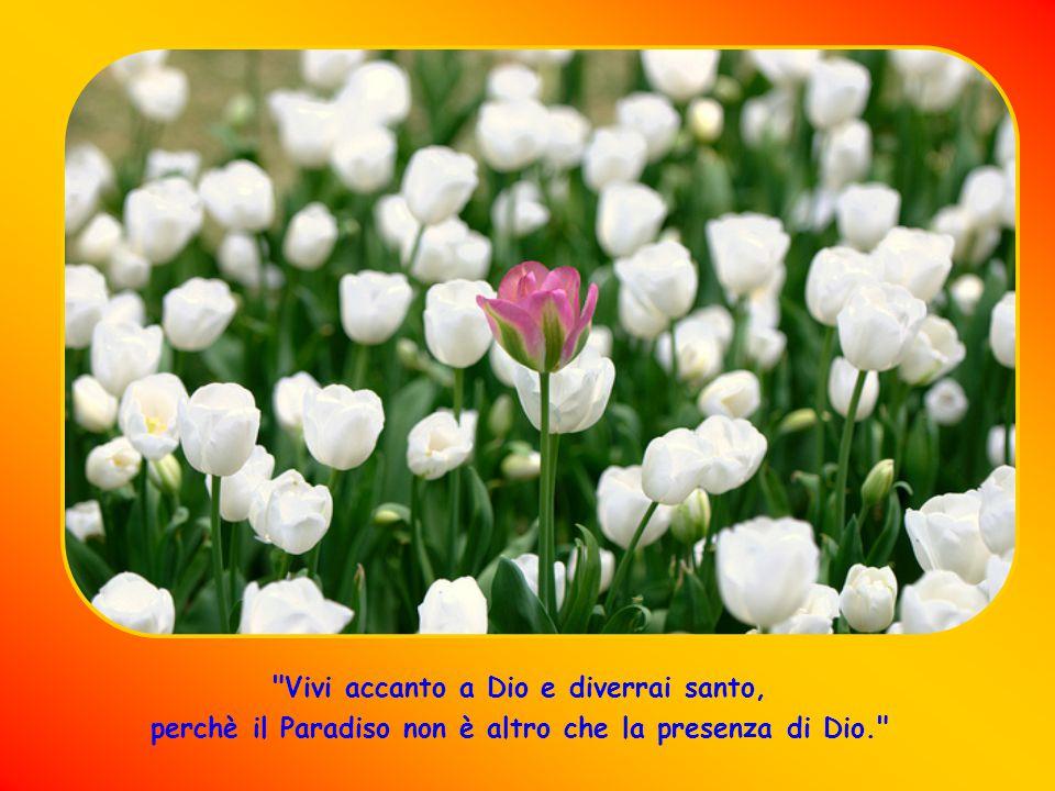 Vivi accanto a Dio e diverrai santo, perchè il Paradiso non è altro che la presenza di Dio.