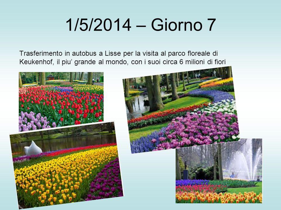 1/5/2014 – Giorno 7 Trasferimento in autobus a Lisse per la visita al parco floreale di Keukenhof, il piu' grande al mondo, con i suoi circa 6 milioni di fiori