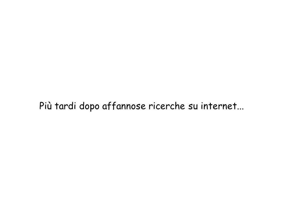 Più tardi dopo affannose ricerche su internet...