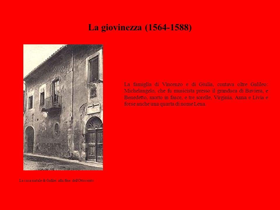 La giovinezza (1564-1588) La famiglia di Vincenzo e di Giulia, contava oltre Galileo: Michelangelo, che fu musicista presso il granduca di Baviera, e