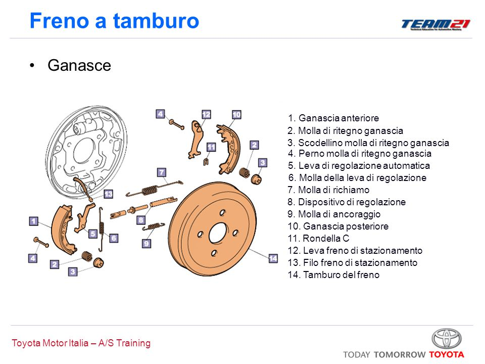 Toyota Motor Italia – A/S Training Freno a tamburo 2. Molla di ritegno ganascia 4. Perno molla di ritegno ganascia 6. Molla della leva di regolazione