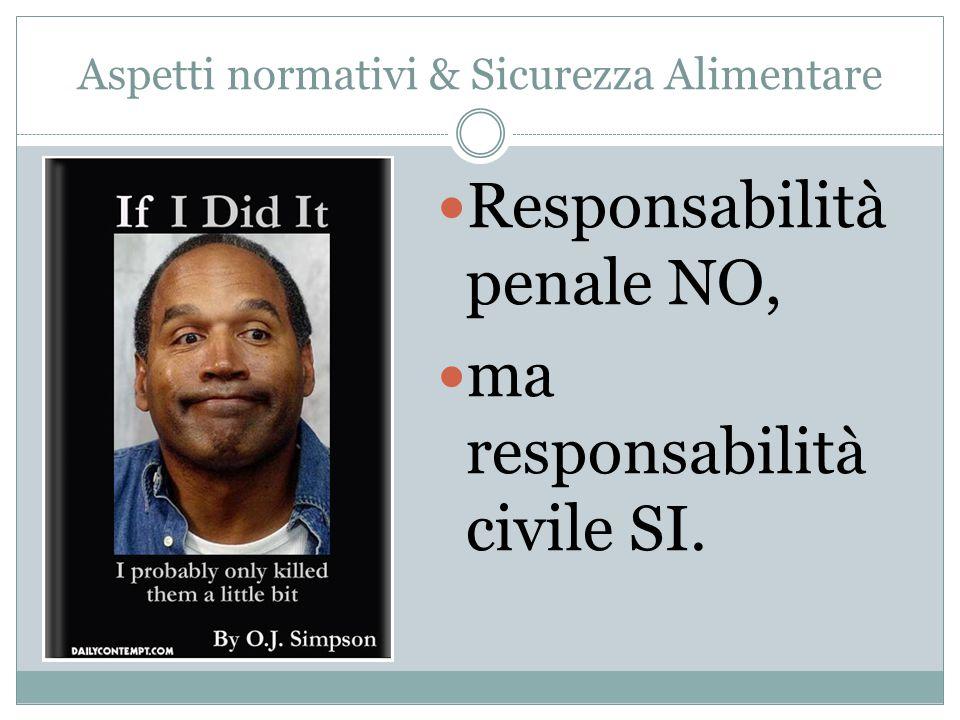 Responsabilità penale NO, ma responsabilità civile SI.