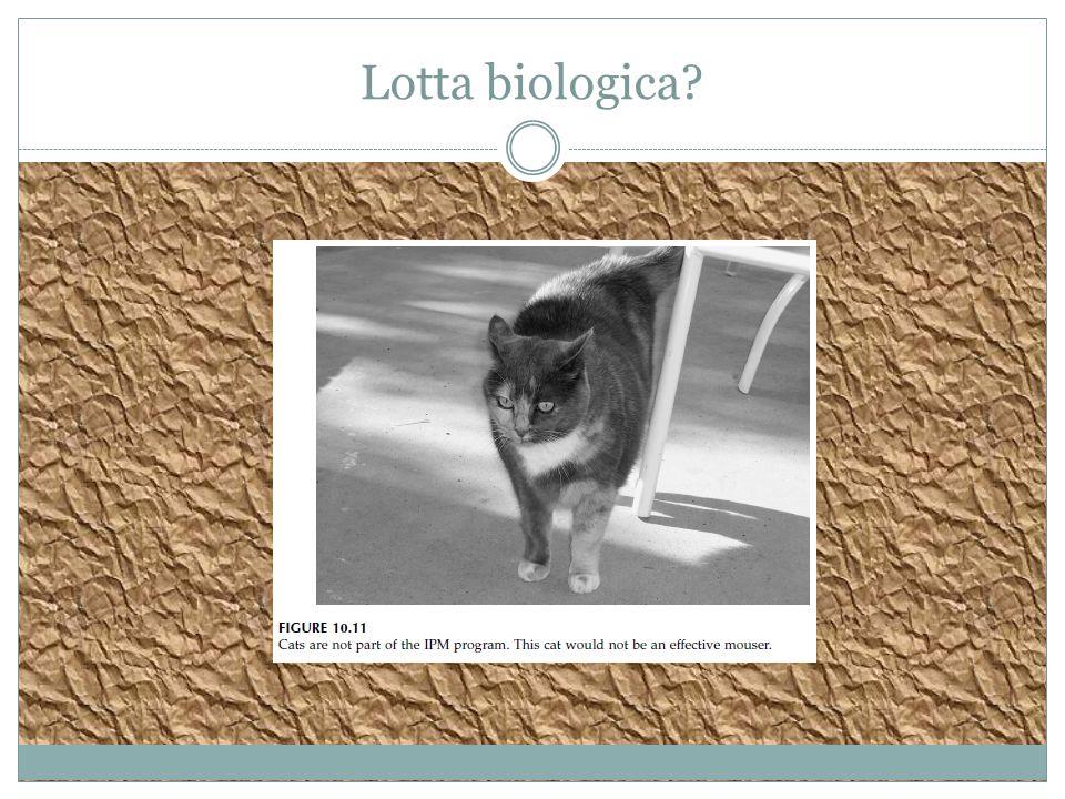 Lotta biologica?