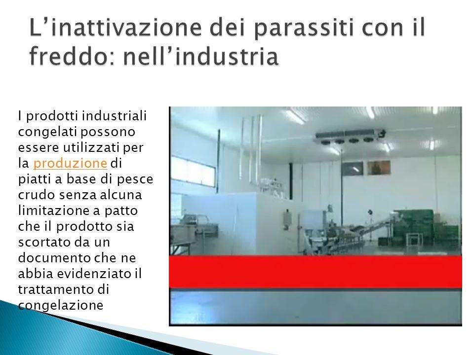I prodotti industriali congelati possono essere utilizzati per la produzione di piatti a base di pesce crudo senza alcuna limitazione a patto che il p