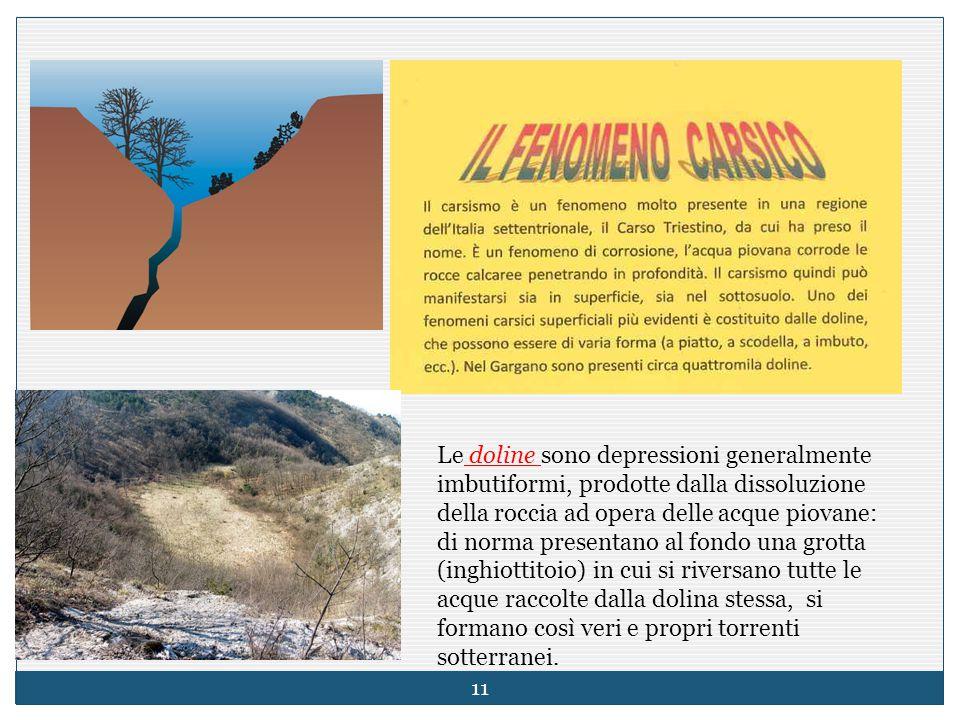 Le doline sono depressioni generalmente imbutiformi, prodotte dalla dissoluzione della roccia ad opera delle acque piovane: di norma presentano al fon
