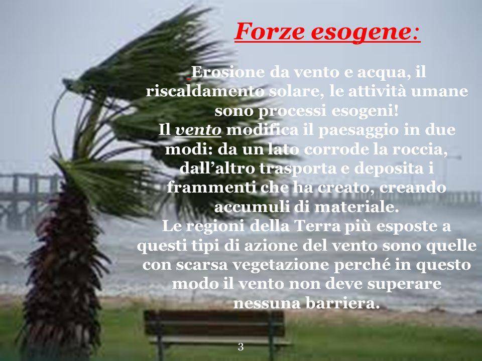 Erosione da vento e acqua, il riscaldamento solare, le attività umane sono processi esogeni! Il vento modifica il paesaggio in due modi: da un lato co