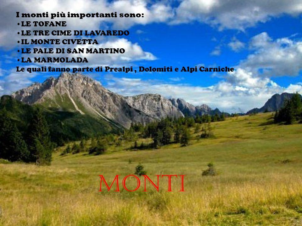 Monti I monti più importanti sono: LE TOFANE LE TRE CIME DI LAVAREDO IL MONTE CIVETTA LE PALE DI SAN MARTINO LA MARMOLADA Le quali fanno parte di Prea
