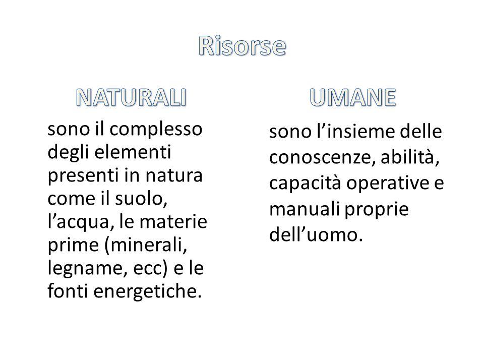 L'insieme delle attività economiche viene suddiviso in tre settori: PRIMARIO agricoltura allevamento pesca silvicoltura attività estrattiva SECONDARIO Industria TERZIARIO servizi