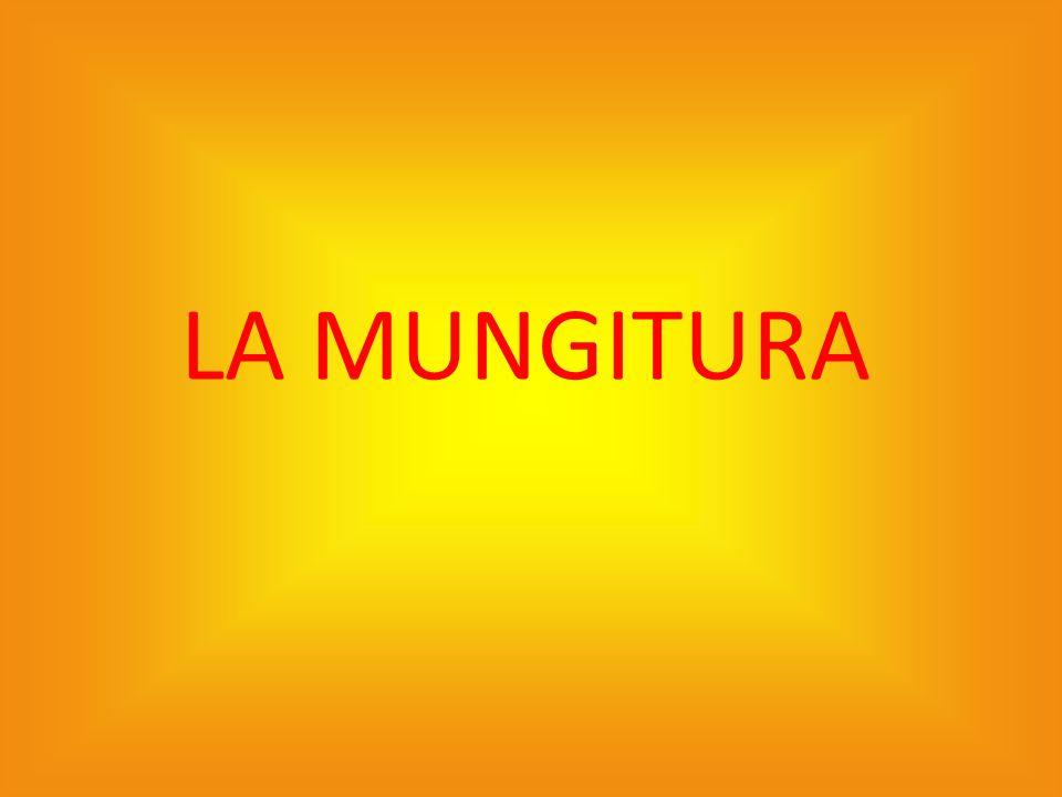 LA MUNGITURA