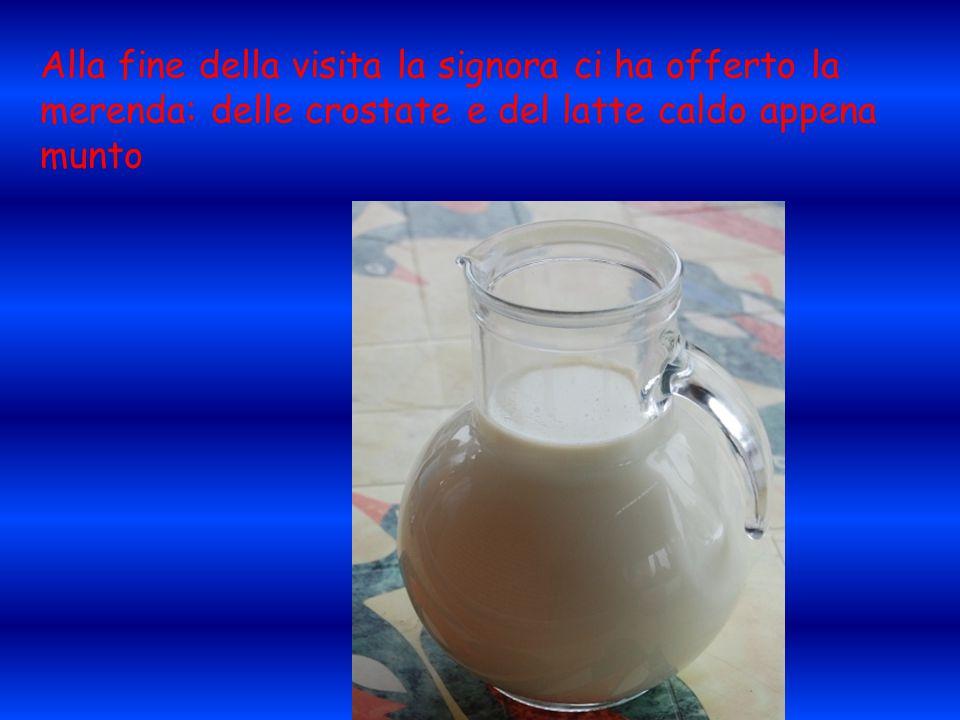 Alla fine della visita la signora ci ha offerto la merenda: delle crostate e del latte caldo appena munto