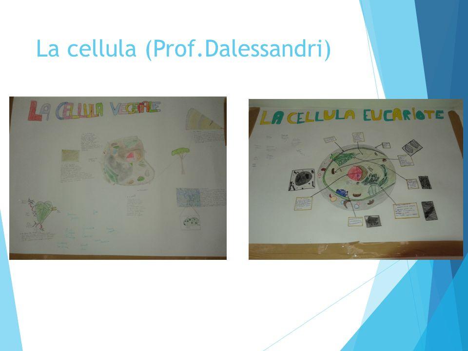 La cellula (Prof.Dalessandri)