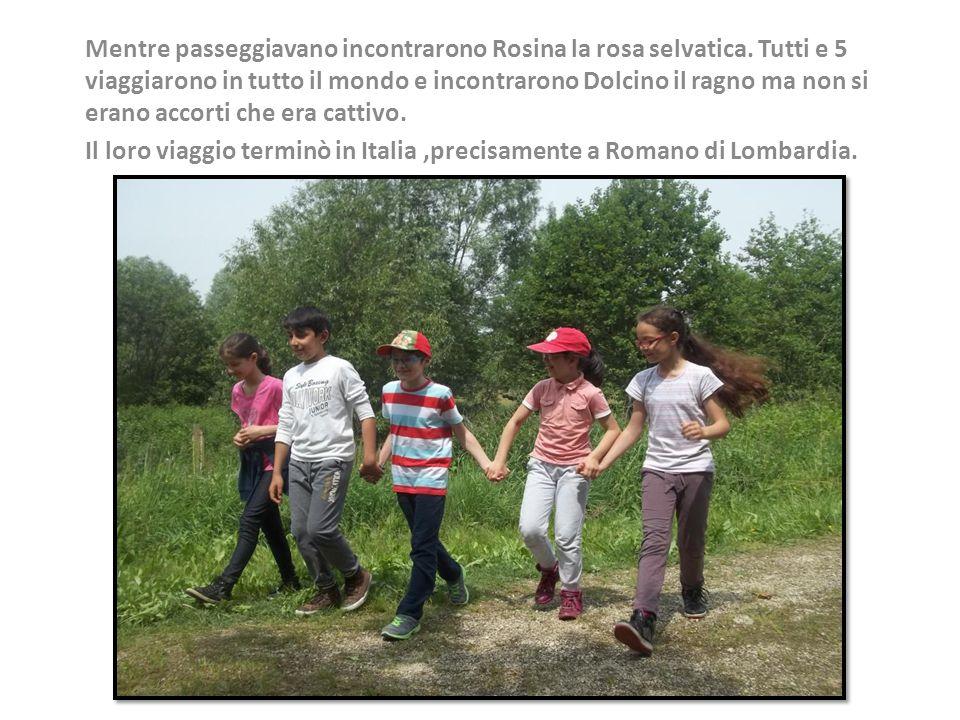 Mentre passeggiavano incontrarono Rosina la rosa selvatica.