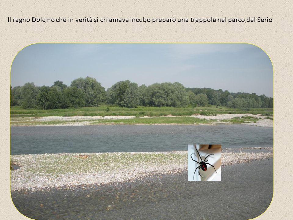 Il ragno Dolcino che in verità si chiamava Incubo preparò una trappola nel parco del Serio