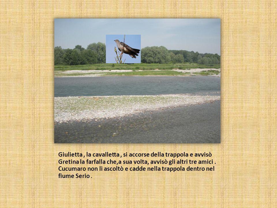 Giulietta, la cavalletta, si accorse della trappola e avvisò Gretina la farfalla che,a sua volta, avvisò gli altri tre amici.