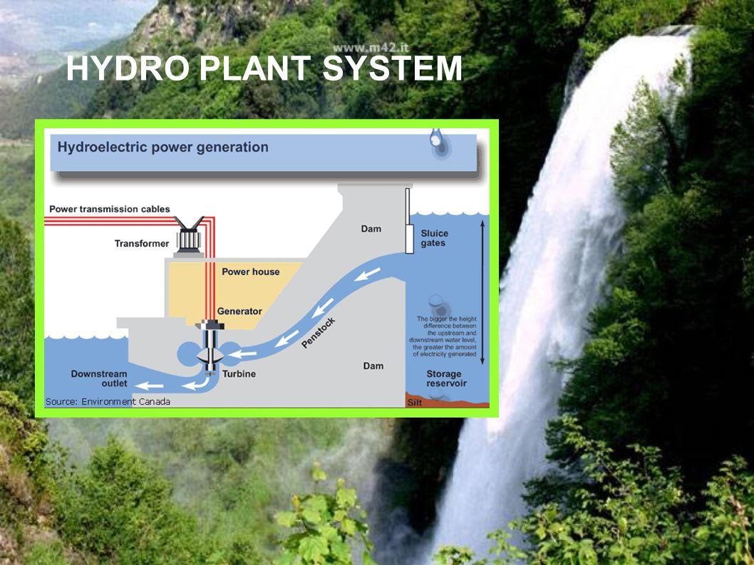HYDRO PLANT SYSTEM