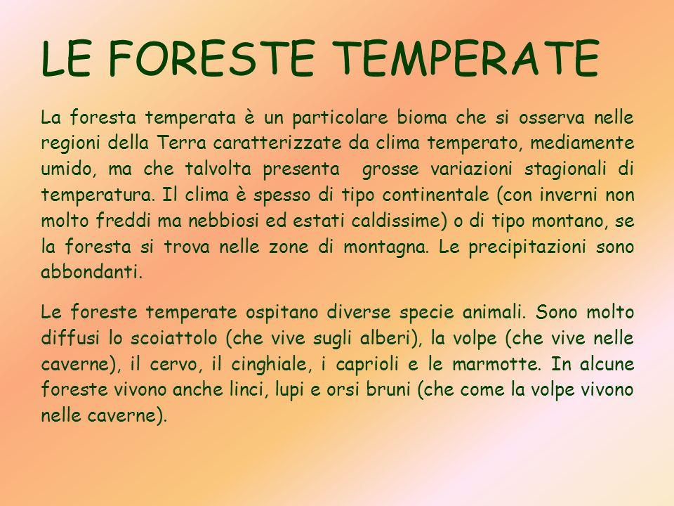 LE FORESTE TEMPERATE La foresta temperata è un particolare bioma che si osserva nelle regioni della Terra caratterizzate da clima temperato, mediament