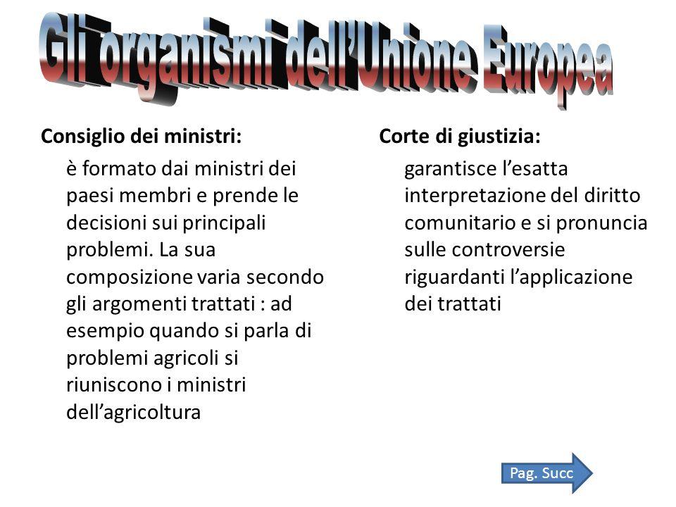 Consiglio dei ministri: è formato dai ministri dei paesi membri e prende le decisioni sui principali problemi.