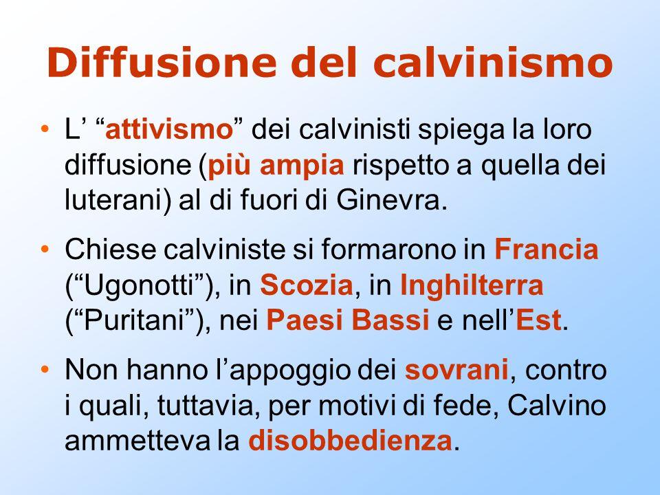 """Diffusione del calvinismo L' """"attivismo"""" dei calvinisti spiega la loro diffusione (più ampia rispetto a quella dei luterani) al di fuori di Ginevra. C"""