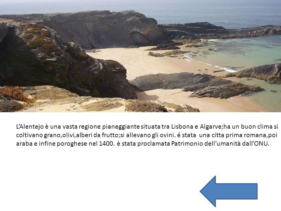 L'Alentejo è una vasta regione pianeggiante situata tra Lisbona e Algarve;ha un buon clima si coltivano grano,olivi,alberi da frutto;si allevano gli o