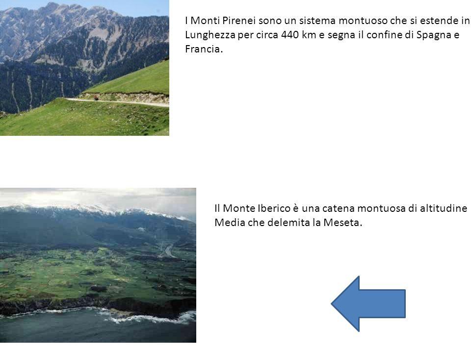 I Monti Pirenei sono un sistema montuoso che si estende in Lunghezza per circa 440 km e segna il confine di Spagna e Francia. Il Monte Iberico è una c