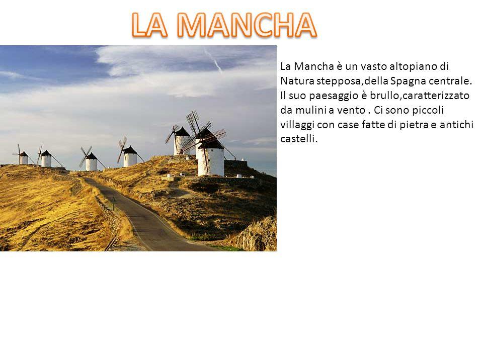 La Mancha è un vasto altopiano di Natura stepposa,della Spagna centrale. Il suo paesaggio è brullo,caratterizzato da mulini a vento. Ci sono piccoli v