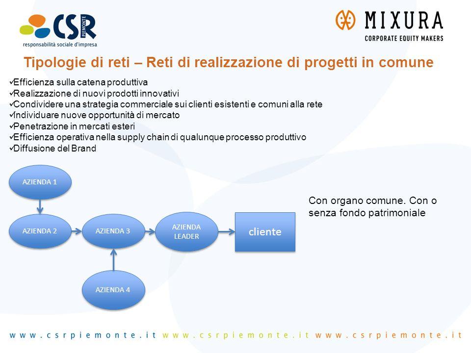 Tipologie di reti – Reti di realizzazione di progetti in comune Efficienza sulla catena produttiva Realizzazione di nuovi prodotti innovativi Condivid