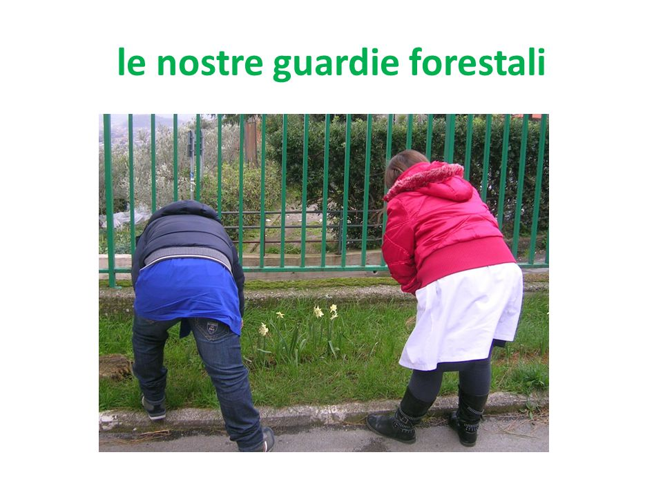 le nostre guardie forestali