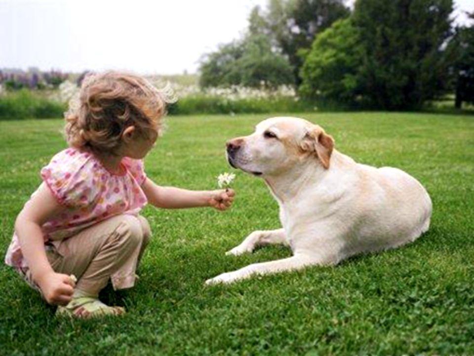 Quanto meno una persona sembra meritare il tuo Amore, forse lo necessita maggiormente.