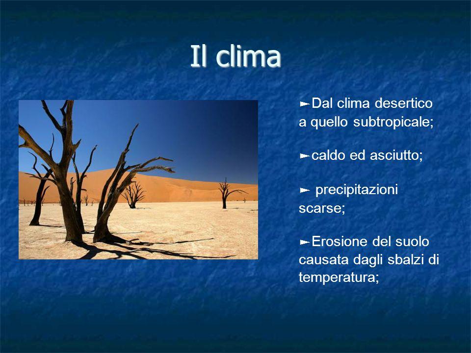 Il clima ► Dal clima desertico a quello subtropicale; ► caldo ed asciutto; ► precipitazioni scarse; ► Erosione del suolo causata dagli sbalzi di temperatura;
