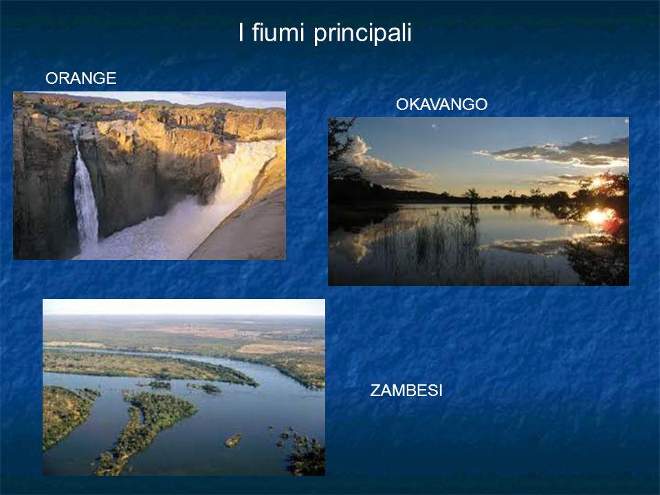 I fiumi principali ORANGE OKAVANGO ZAMBESI