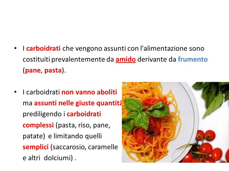 I carboidrati che vengono assunti con l alimentazione sono costituiti prevalentemente da amido derivante da frumento (pane, pasta).