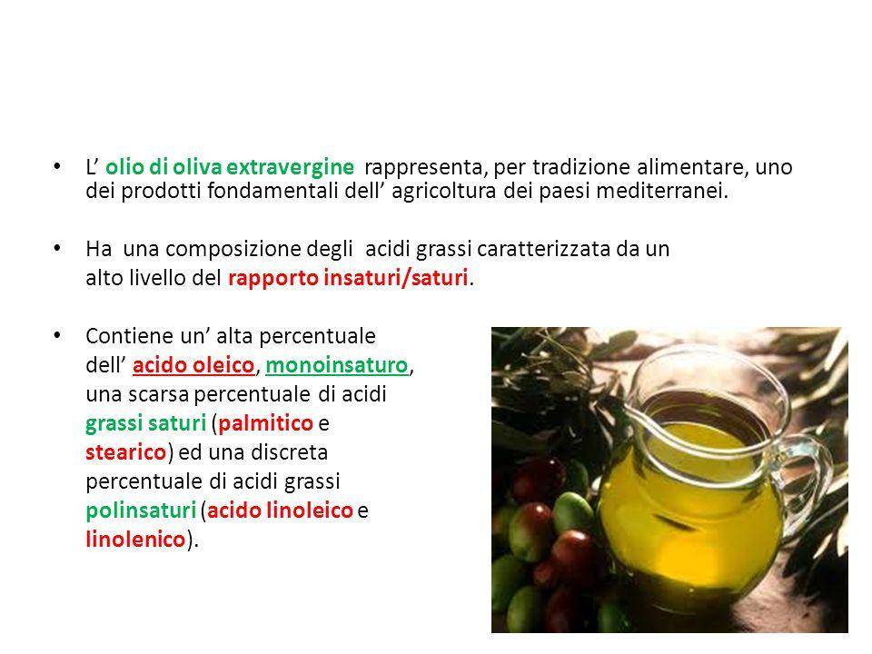 L' olio di oliva extravergine rappresenta, per tradizione alimentare, uno dei prodotti fondamentali dell' agricoltura dei paesi mediterranei.