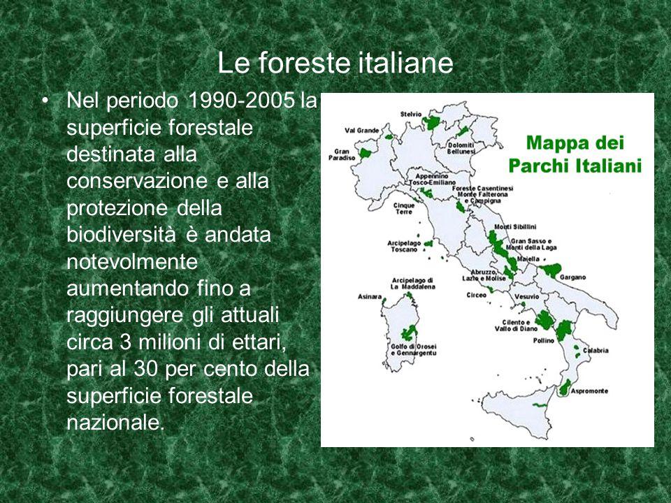 Le foreste italiane Nel periodo 1990-2005 la superficie forestale destinata alla conservazione e alla protezione della biodiversità è andata notevolmente aumentando fino a raggiungere gli attuali circa 3 milioni di ettari, pari al 30 per cento della superficie forestale nazionale.
