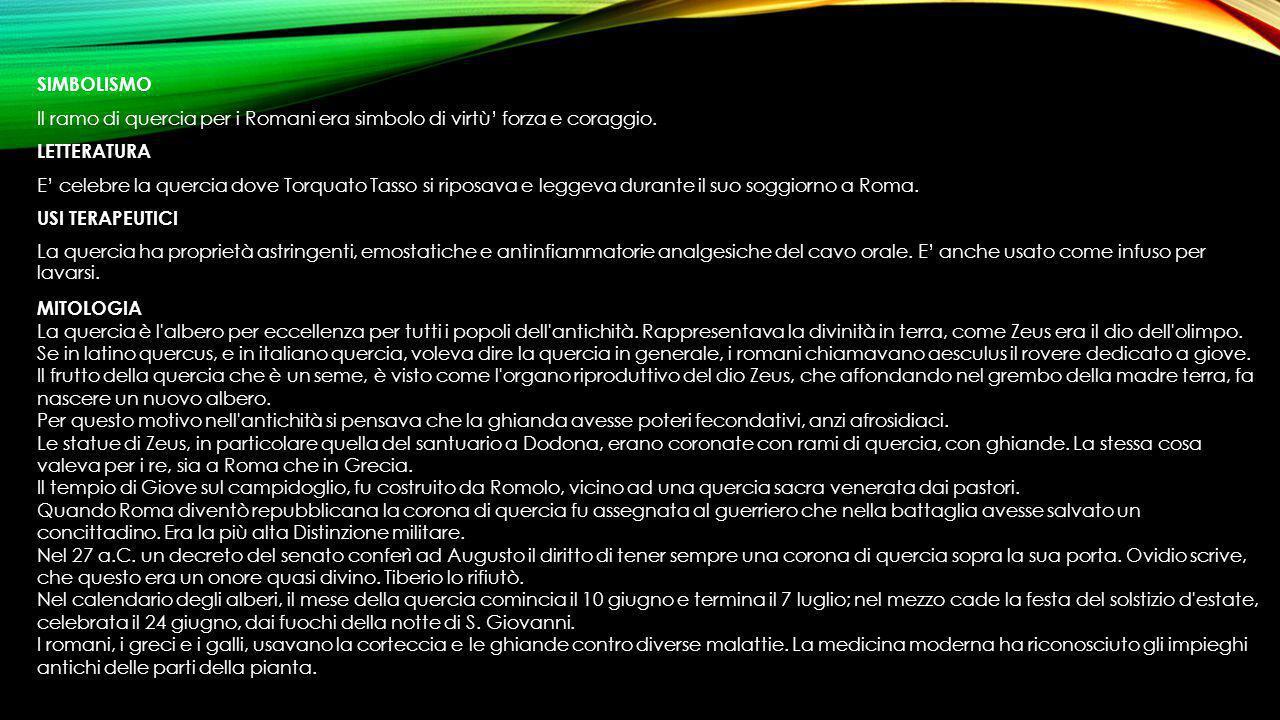SIMBOLISMO Il ramo di quercia per i Romani era simbolo di virtù' forza e coraggio. LETTERATURA E' celebre la quercia dove Torquato Tasso si riposava e