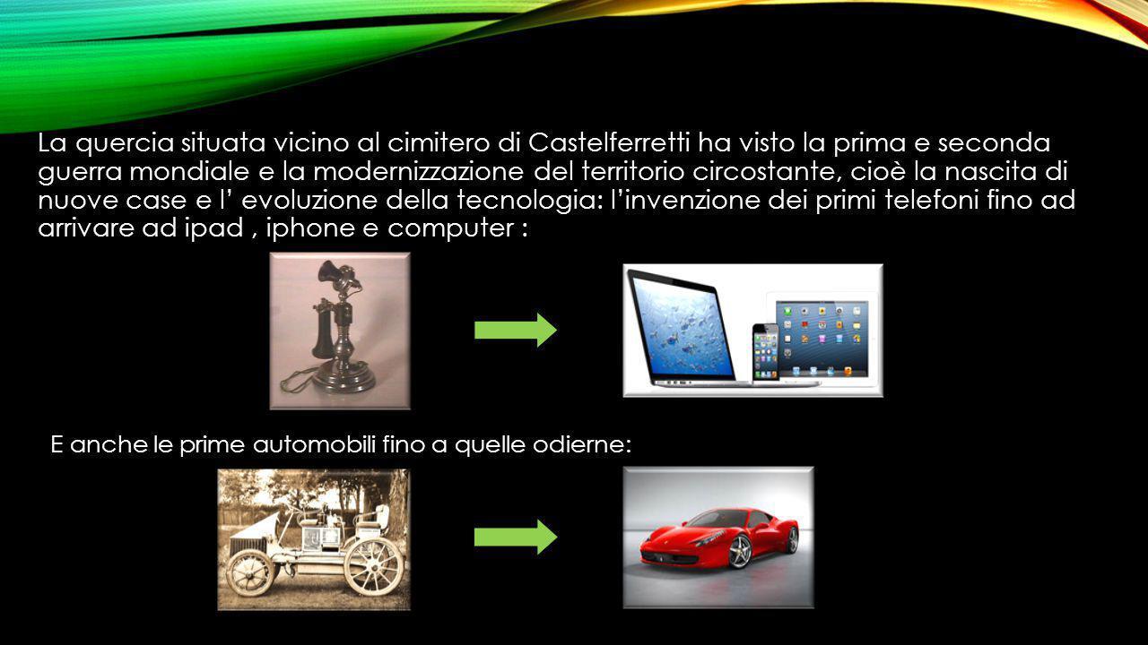 E anche le prime automobili fino a quelle odierne: La quercia situata vicino al cimitero di Castelferretti ha visto la prima e seconda guerra mondiale