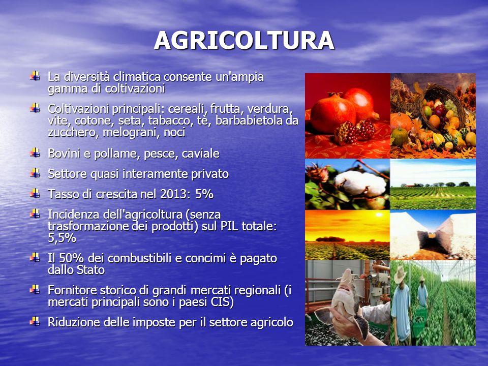 AGRICOLTURA La diversità climatica consente un ampia gamma di coltivazioni Coltivazioni principali: cereali, frutta, verdura, vite, cotone, seta, tabacco, tè, barbabietola da zucchero, melograni, noci Bovini e pollame, pesce, caviale Settore quasi interamente privato Tasso di crescita nel 2013: 5% Incidenza dell agricoltura (senza trasformazione dei prodotti) sul PIL totale: 5,5% Il 50% dei combustibili e concimi è pagato dallo Stato Fornitore storico di grandi mercati regionali (i mercati principali sono i paesi CIS) Riduzione delle imposte per il settore agricolo