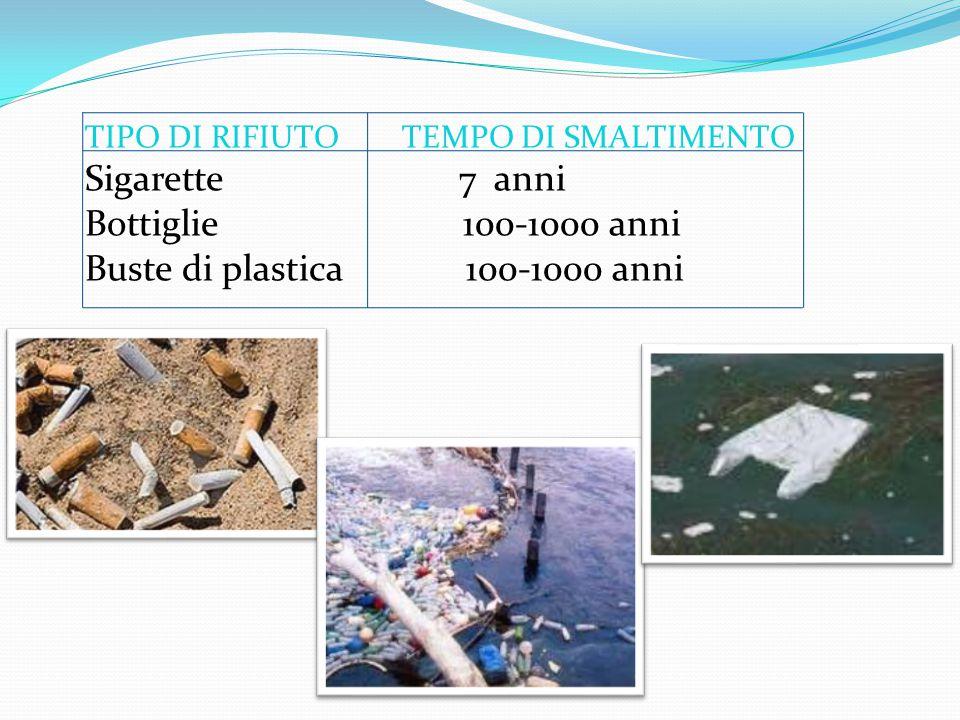 TIPO DI RIFIUTO TEMPO DI SMALTIMENTO Sigarette 7 anni Bottiglie 100-1000 anni Buste di plastica 100-1000 anni