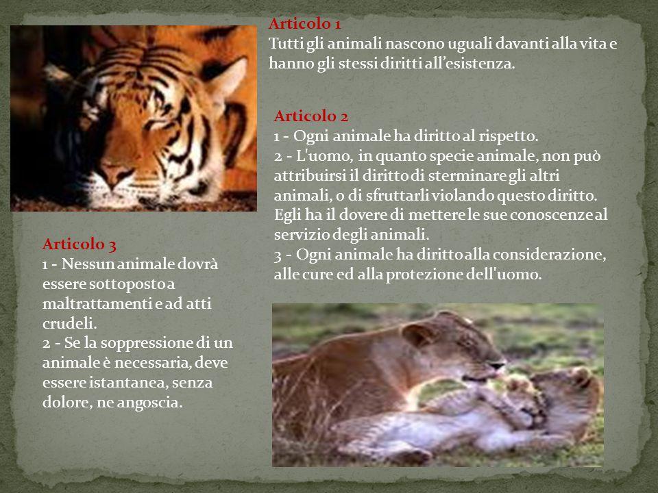 Articolo 1 Tutti gli animali nascono uguali davanti alla vita e hanno gli stessi diritti all'esistenza.