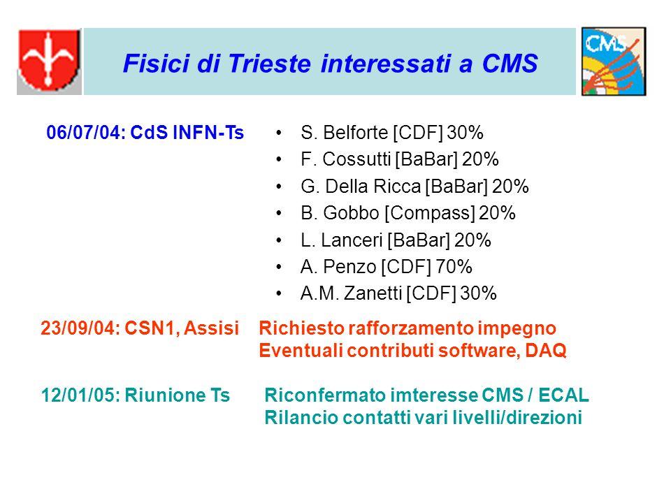 S. Belforte [CDF] 30% F. Cossutti [BaBar] 20% G.