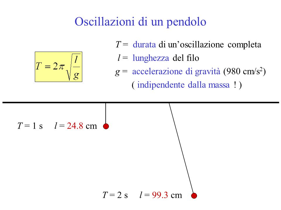 Oscillazioni di un pendolo T = durata di un'oscillazione completa l = lunghezza del filo g = accelerazione di gravità (980 cm/s 2 ) ( indipendente dal