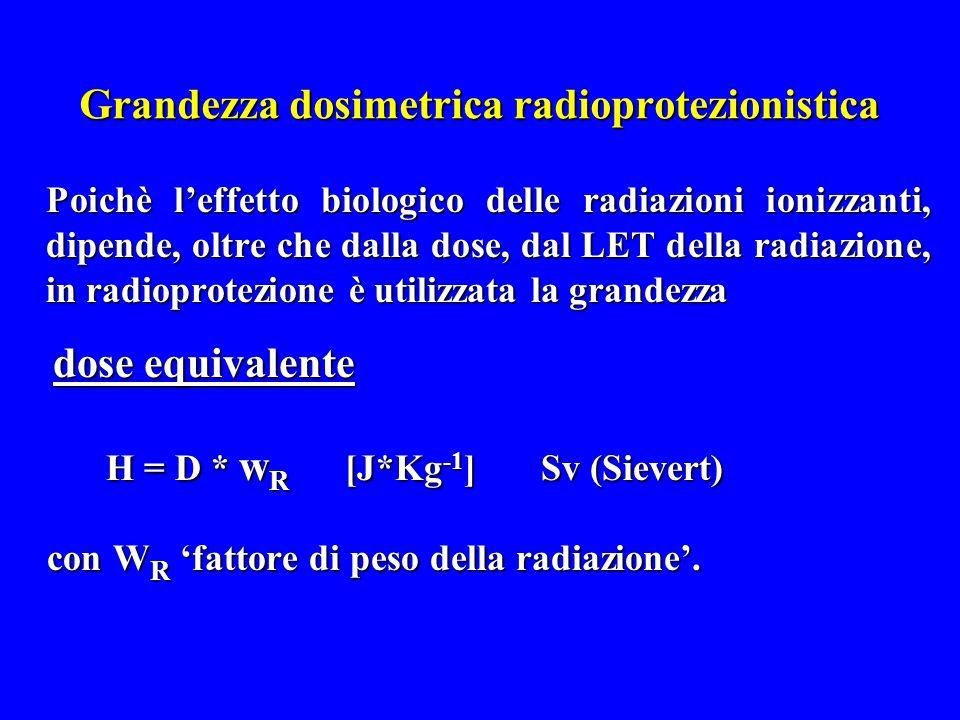Valori dei fattori di peso W R Fotoni, elettroni e muoni 1 Fotoni, elettroni e muoni 1 Neutroni con energia < 10 keV 5 Neutroni con energia < 10 keV 5 tra 10 keV - 100 keV10 > 100 keV - 2 MeV20 > 100 keV - 2 MeV20 > 2 MeV - 20 MeV10 > 2 MeV - 20 MeV10 > 20 MeV 5 > 20 MeV 5 Protoni 5 Protoni 5 Particelle  e nuclei pesanti20 Particelle  e nuclei pesanti20