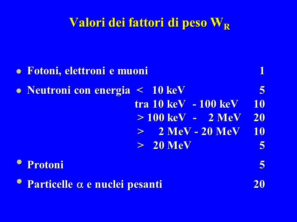 Valori dei fattori di peso W R Fotoni, elettroni e muoni 1 Fotoni, elettroni e muoni 1 Neutroni con energia < 10 keV 5 Neutroni con energia < 10 keV 5