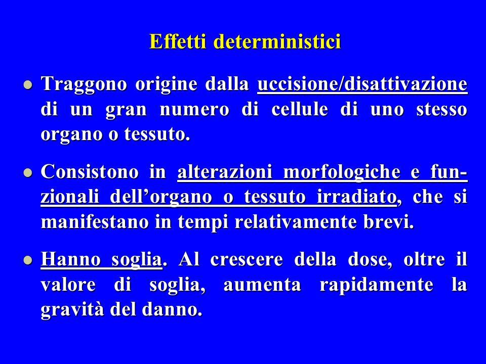 Effetti deterministici Traggono origine dalla uccisione/disattivazione di un gran numero di cellule di uno stesso organo o tessuto. Traggono origine d