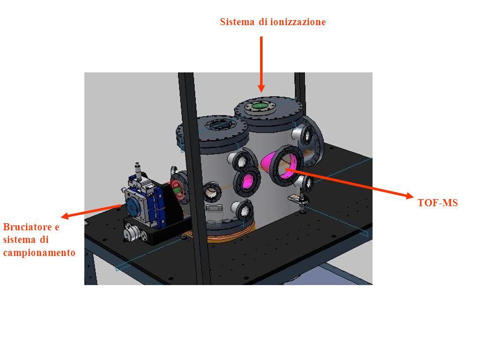 Bruciatore e sistema di campionamento Sistema di ionizzazione TOF-MS