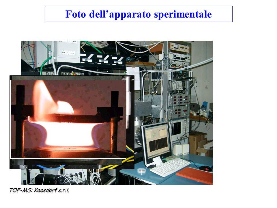 TOF-MS: Kaesdorf s.r.l. Foto dell'apparato sperimentale