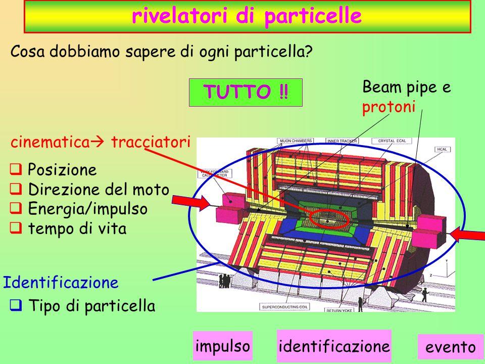 13 rivelatori di particelle  Posizione  Direzione del moto  Energia/impulso  tempo di vita  Tipo di particella Cosa dobbiamo sapere di ogni particella.