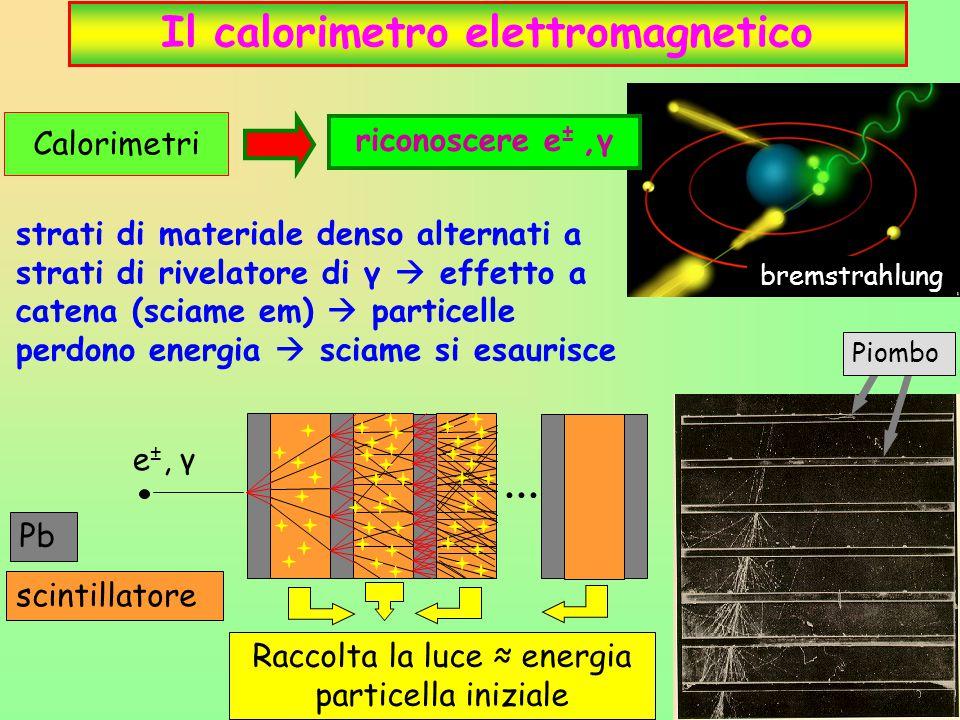 19 Il calorimetro elettromagnetico Piombo strati di materiale denso alternati a strati di rivelatore di γ  effetto a catena (sciame em)  particelle perdono energia  sciame si esaurisce bremstrahlung Calorimetri riconoscere e ±,γ