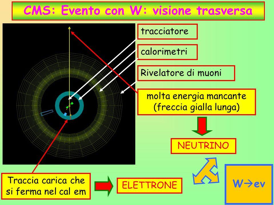 29 CMS: Evento con W: visione trasversa tracciatore calorimetri Rivelatore di muoni molta energia mancante (freccia gialla lunga) NEUTRINO Traccia car