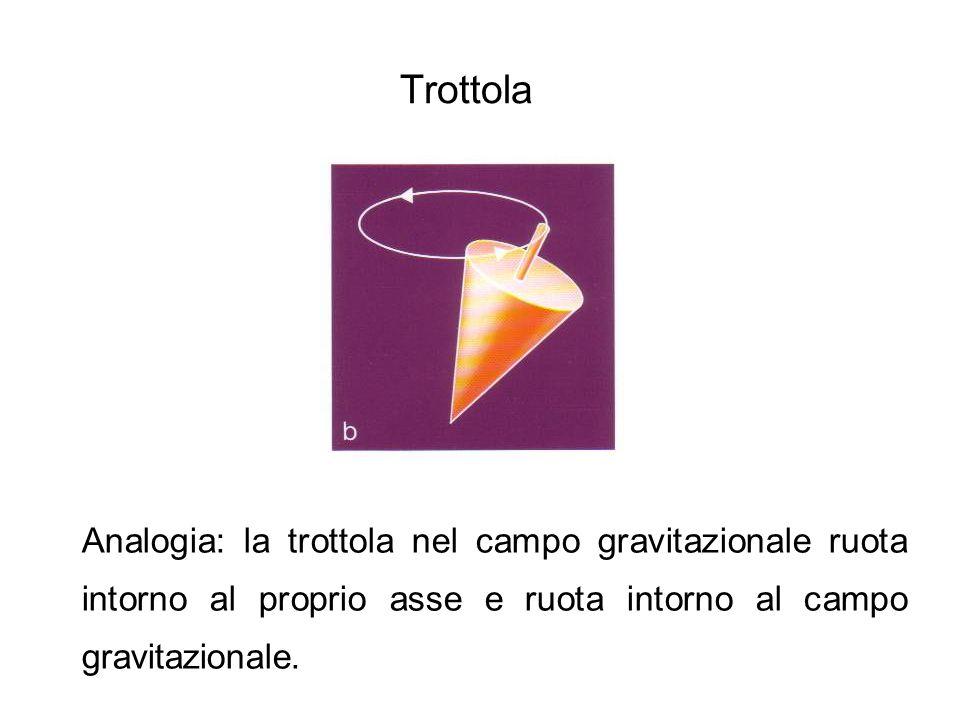Trottola Analogia: la trottola nel campo gravitazionale ruota intorno al proprio asse e ruota intorno al campo gravitazionale.