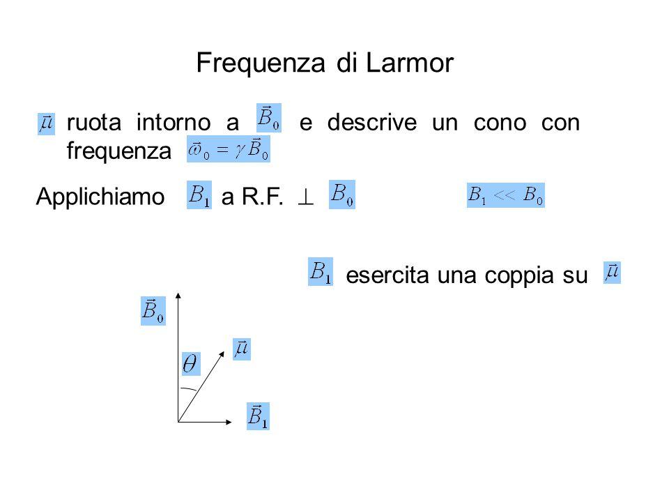 Applichiamo a R.F.  ruota intorno a e descrive un cono con frequenza esercita una coppia su Frequenza di Larmor